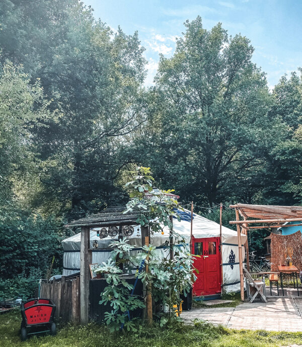 Tiktok Instagram reels training in yurt